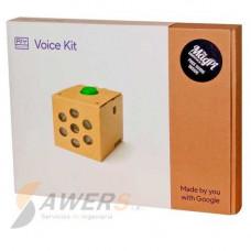 Google AI Voice Kit (Inteligencia Artificial)