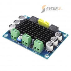 XH-M542 Amplificador Mono 12V-100W